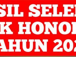 420.504 Guru Honorer Tidak Lulus Uji Kompetensi PPPK
